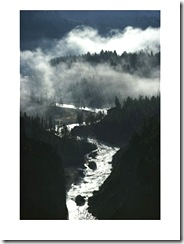 The-River-Cuts-Silver-Curves-Through-Dark-Pines-and-Fog-Posters